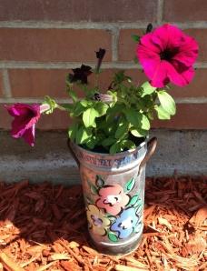 Perky Petunia