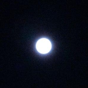 Blue Moon 2013
