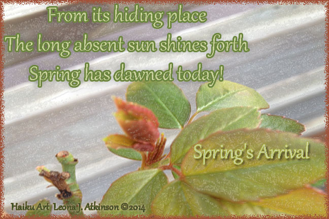 Spring Dawns--Haiku Art