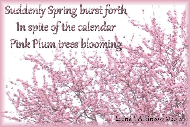 haiku poems about spring - photo #4