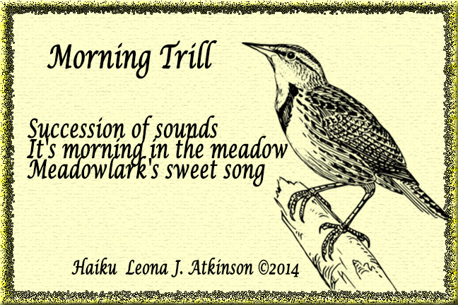 Morning Trill--Haiku poem on sound--Meadowlark's song
