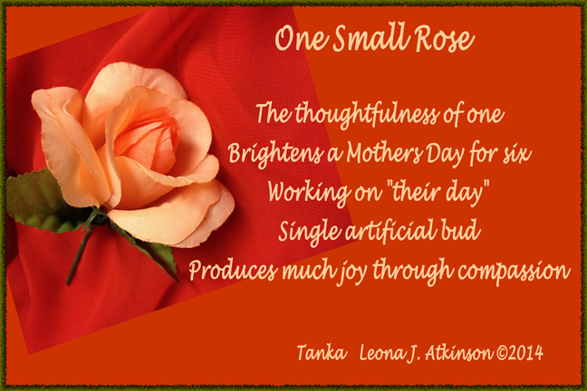 One Small Rose--Tanka