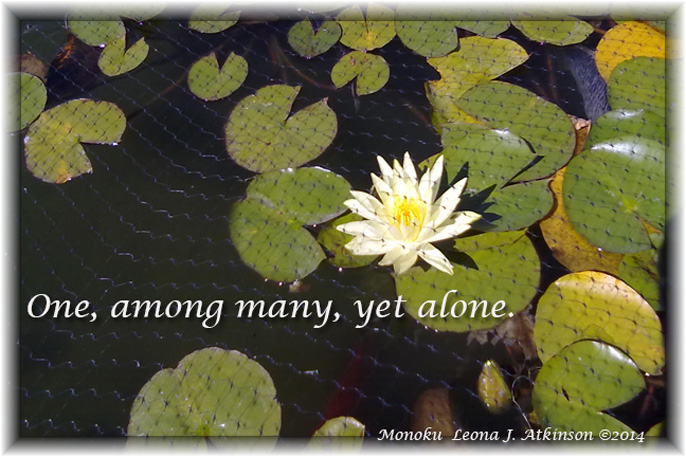Alone--Monoku poetry
