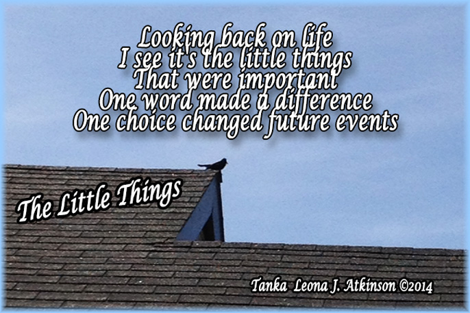 The Little Things--Tanka poem--Bird on a roof photo