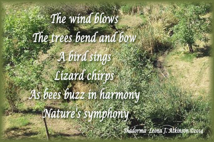 Meadow Sounds--Shadorma poem