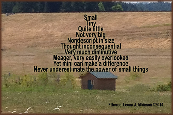 petite little house---Etheree poem