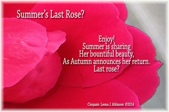 cinquain poem about flowers - photo #15