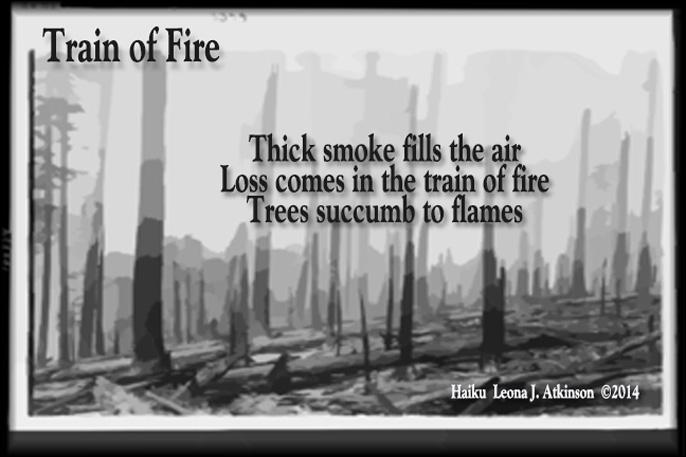 forest fire, Haiku