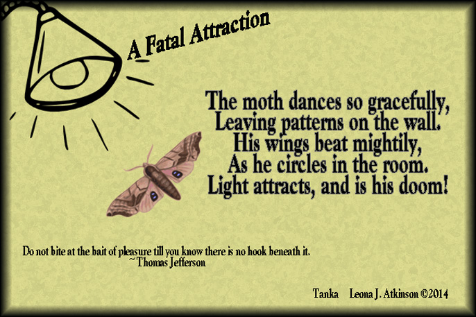 Tanka poem about a moth attracted to the light