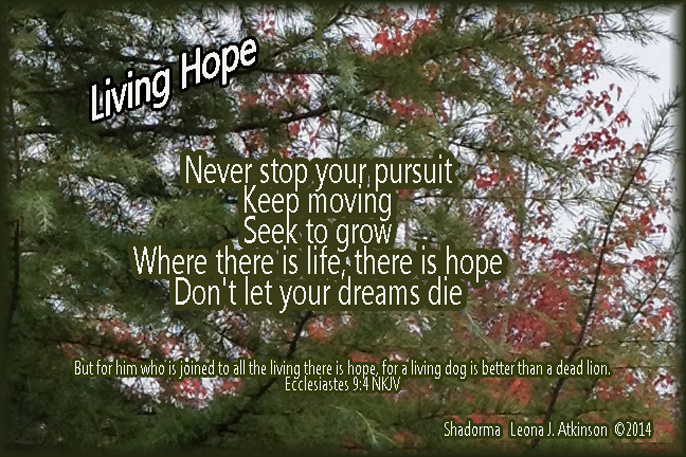 Shadorma poem about hope based on scripture Eccl 9:4