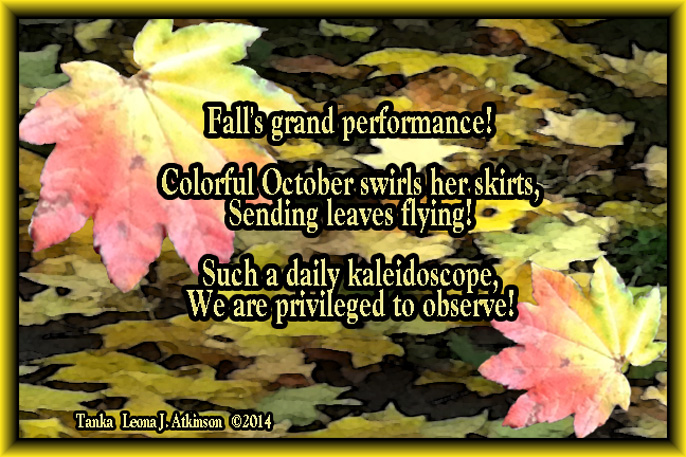 Tanka poem about October and fall colors