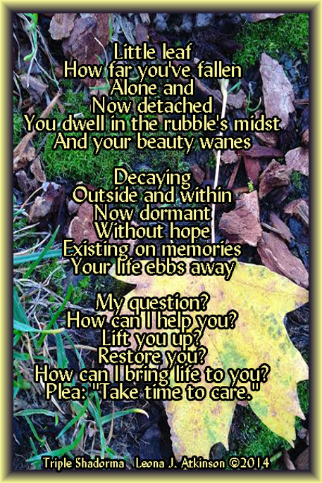 Triple Shadorma poem about taking time to care inspired by a Fall leaf photo