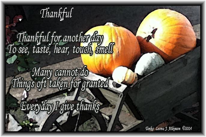Thankful--Tanka poem