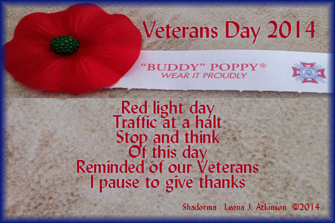 Veterans Day 2014--Shadorma poem--picture of a poppy from VFW