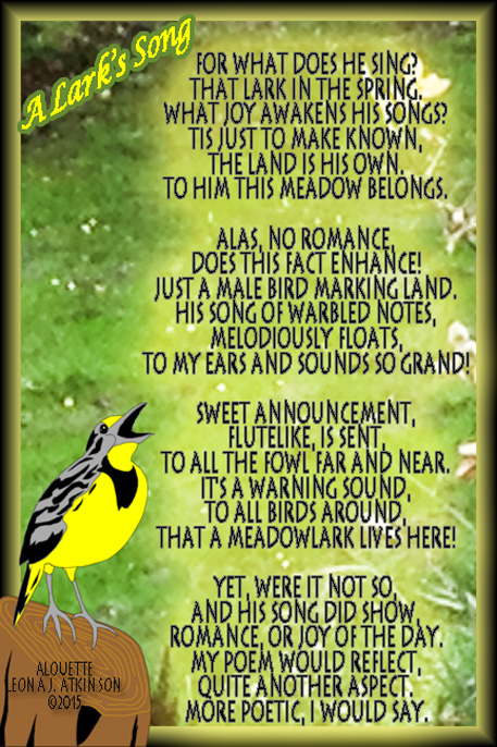 A Lark's Song--Alouette poem about a Meadowlark