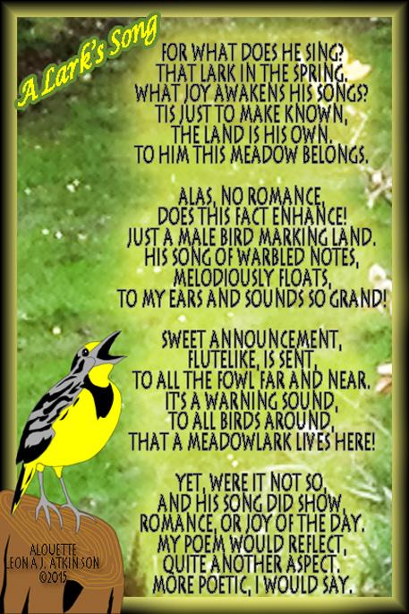 A Lark's Song--Alouette poem about a Meadowlark