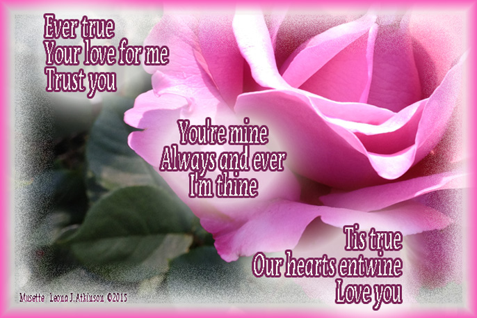 Rose--Musette poem of love