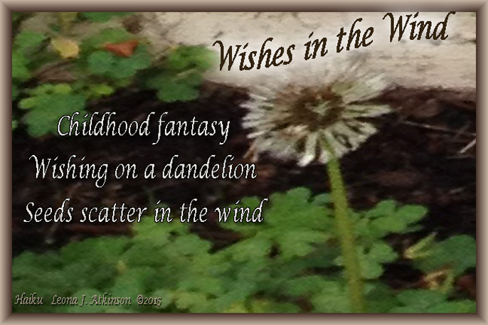 Dandelion Wishes-Haiku