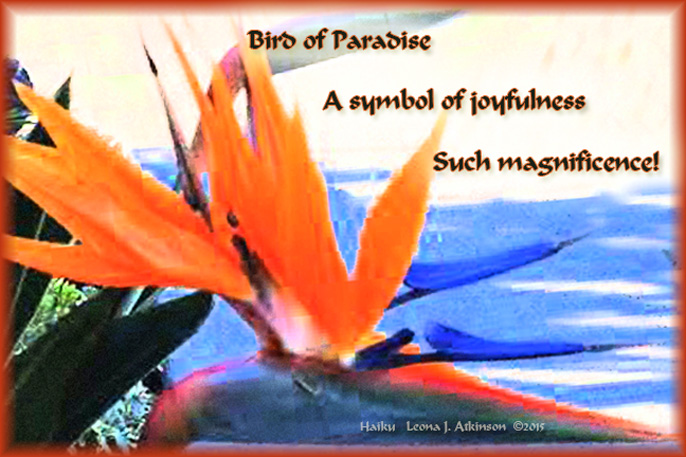 Bird of Paradise flower and haiku