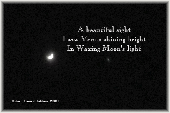 Waxing Moon--Venus--Haiku