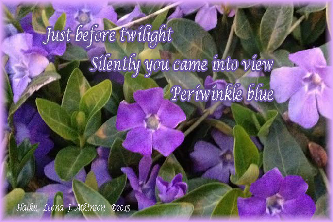 haiku poems about flowers - photo #10