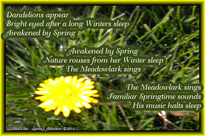 "Dandelion, Spring, Haiku Set, prompt ""sleep"""