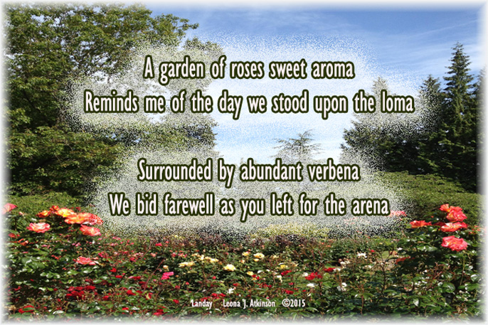 Landay poem--rose garden photo