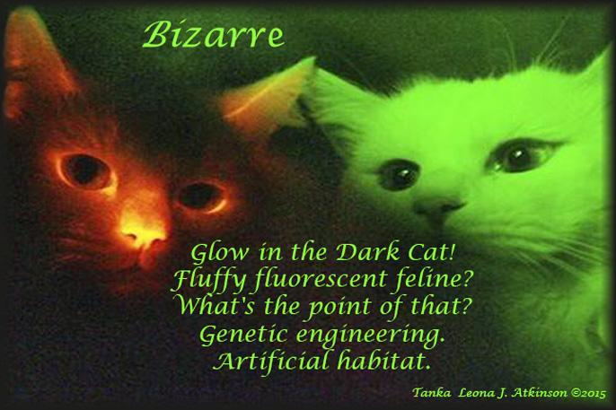 Tanka poem about Glow-in-the-Dark Cats--genetic engineering