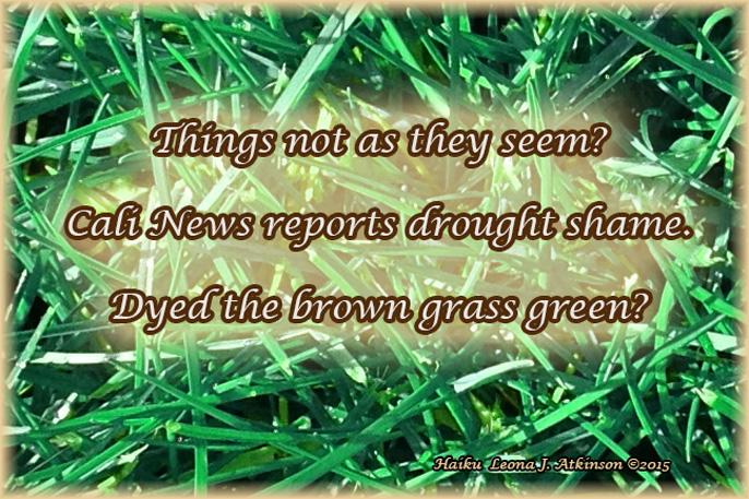 Haiku about the California Drought Shame