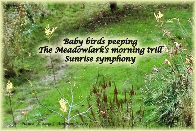 Haiku-Haiga--Song of the Meadow