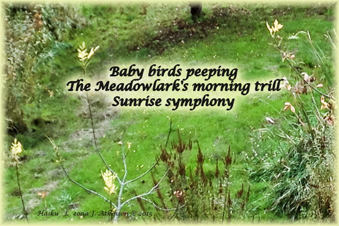 Haiku-Haiga--Song of the Meadow