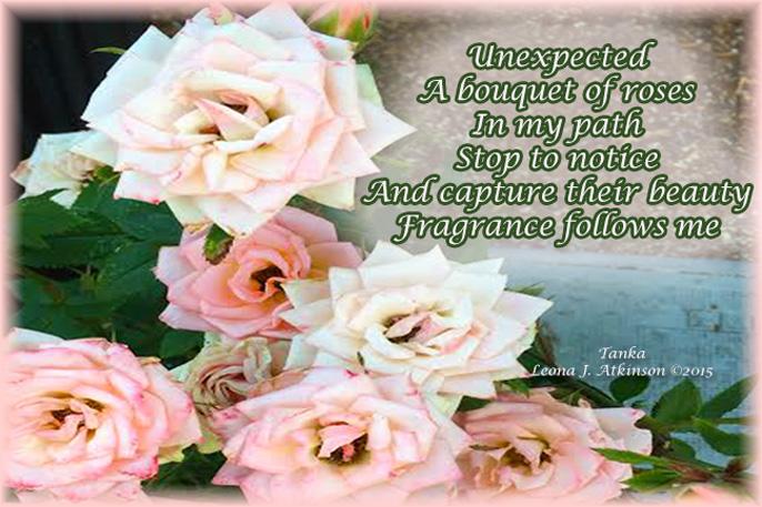 Roses--Tanka poem