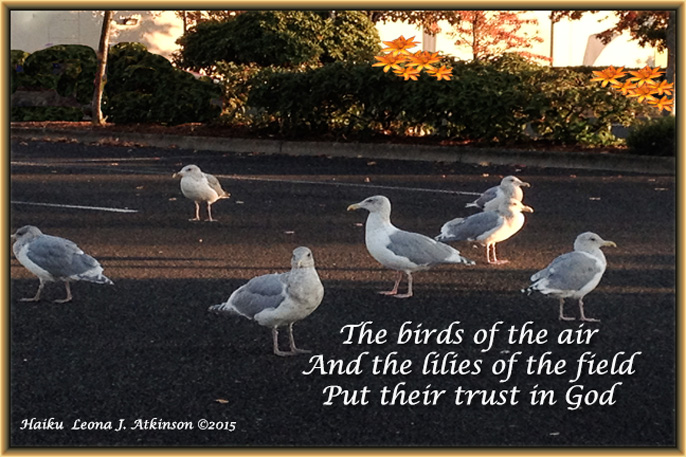 Haiku based on Trust--Scripture--Matthew 6:26--6:28-29