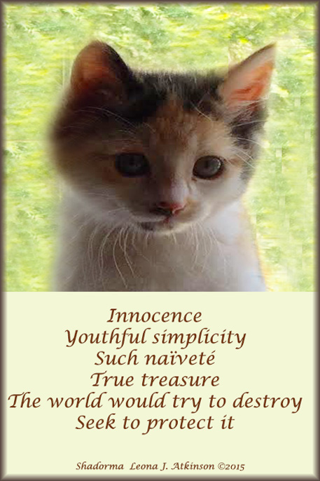 Kitten photo--Shadorma poem about goodness