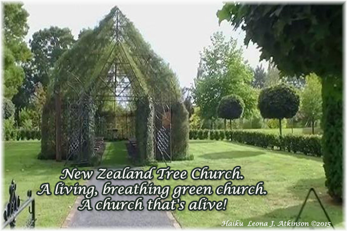 "Haiku about ""Tree Church"""