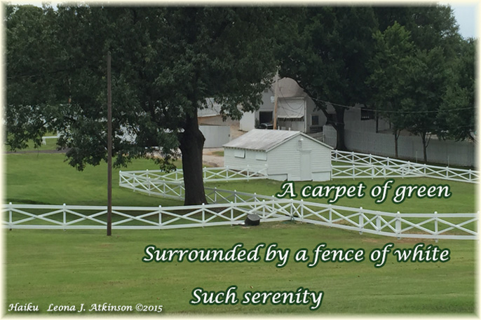 Photo: Graceland Stables, Memphis, Tenn--Haiku