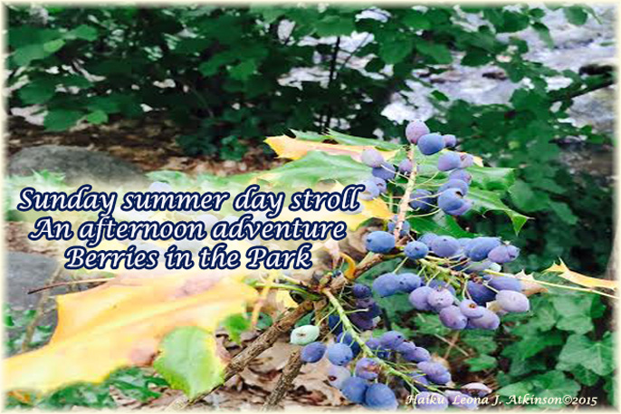 Summer Day in the Park--Haiku