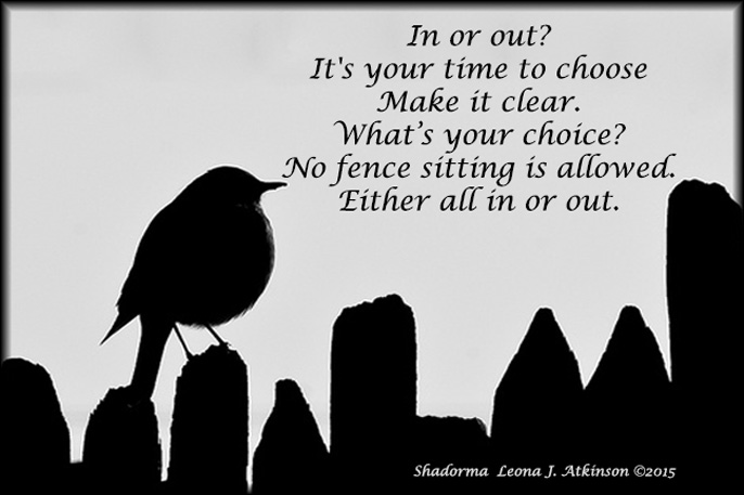 Shadorma poem about which side of the fence are you on?