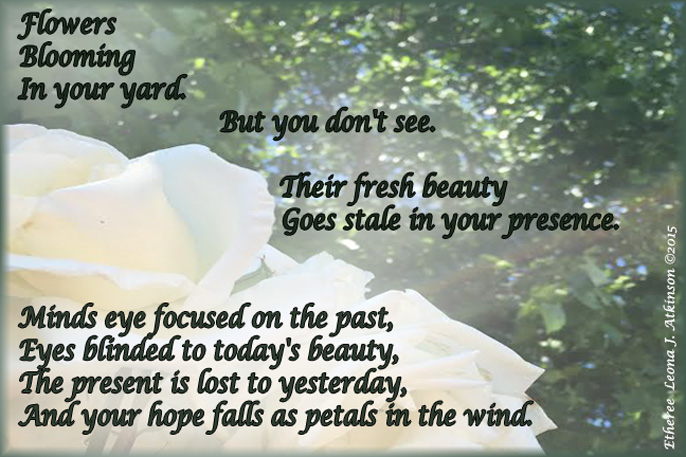 White Roses--Etheree poem about being blinded to the present beauty