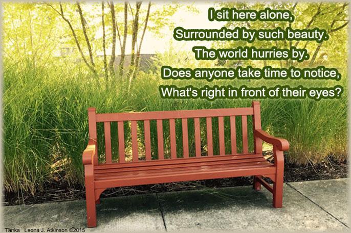 Park Bench--Tanka poem