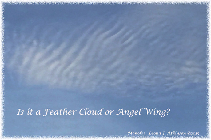Feather Cloud or Angel Wing?  Monoku poem