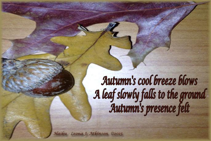 Autumn--Oak Leaves--Haiku