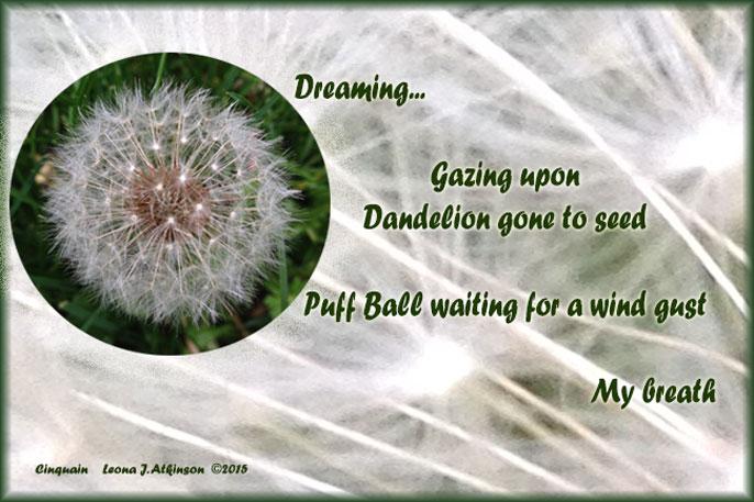 Dandelion Puff--Cinquain poem