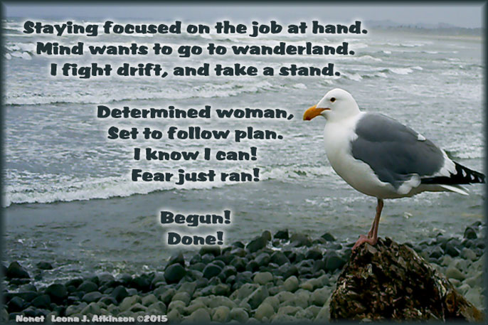 Focused on the job at hand--Nonet poem--Seagull picture