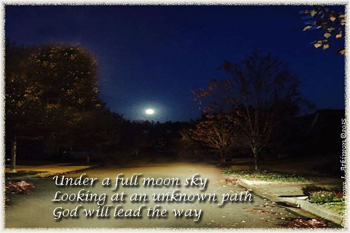 No Fear--Haiku--Moonlit path