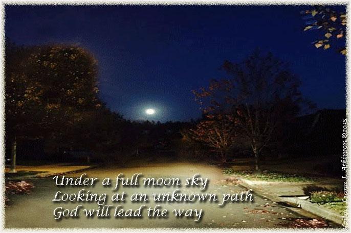 No Fear--Haiku--Moonlit path