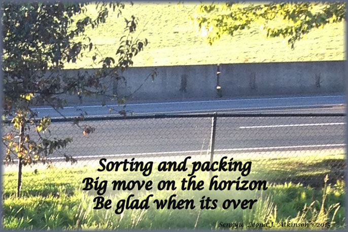 Senryu poem about packing and sorting to move