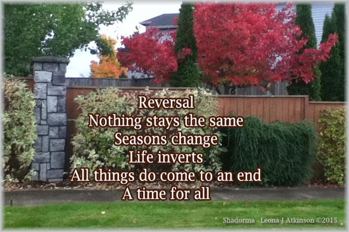 Seasons of Life--Shadorma poem
