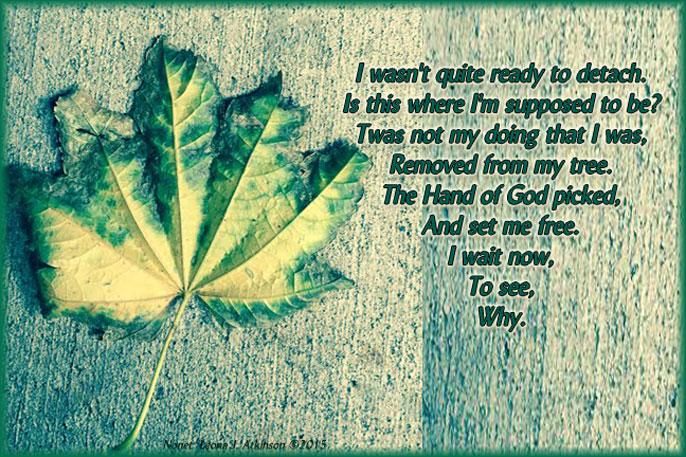 Fall Leaf--Nonet poem