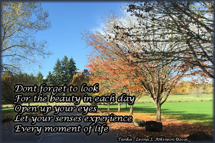 Don't Forget to appreciate life and beauty of nature--Tanka poem--Fall colors